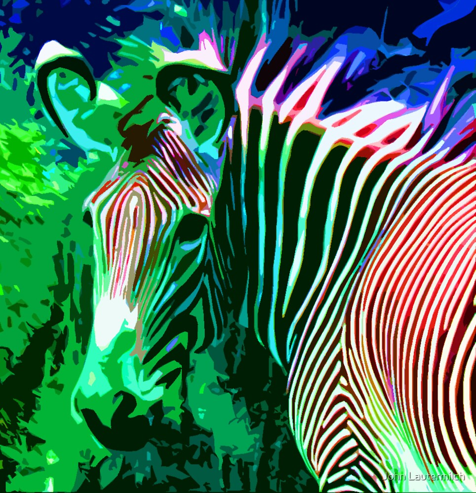 """""""Painted Zebra"""" (front) by John Lautermilch"""