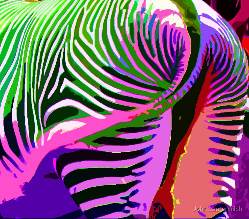 """""""Painted Zebra"""" (back) by John Lautermilch"""