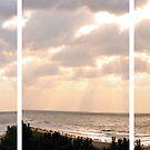 Hilton Head by Heather Meadows
