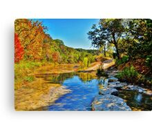 Lost Maples Canvas Print