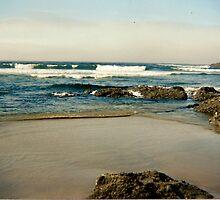 Oregon Coast by Rosemarie