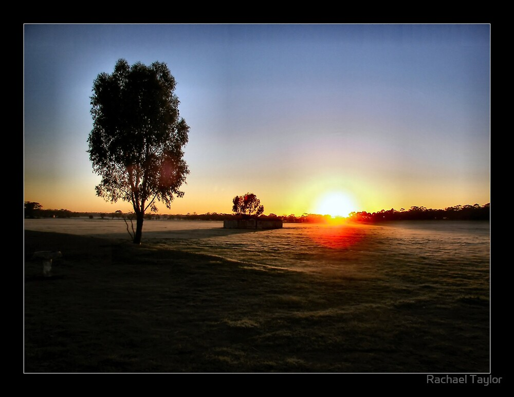 Farm Sunrise by Rachael Taylor