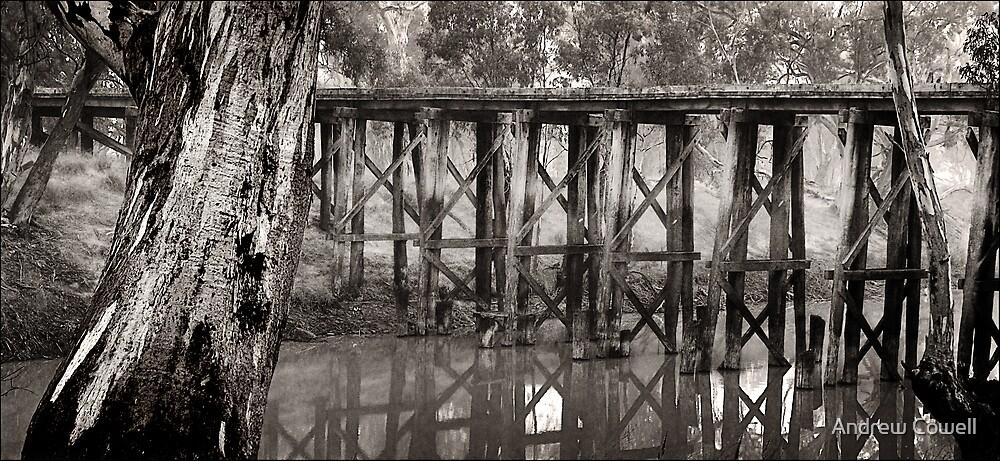 quantong rail bridge by Andrew Cowell
