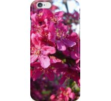 Blooming Crab Apple Tree iPhone Case/Skin