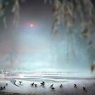 Winter Mist by Igor Zenin