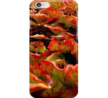 getting festive? iPhone Case/Skin