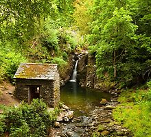 Rydal Falls and the Grotto by Stephen Read