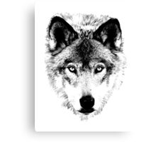 Wolf Face. Digital Wildlife Image. Canvas Print