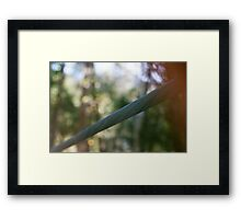 Steel Cable Framed Print