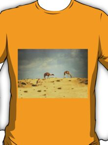 Camels in Dubai T-Shirt
