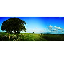 The Salisbury Plain Photographic Print