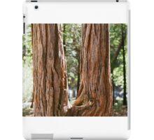 Dual Life iPad Case/Skin