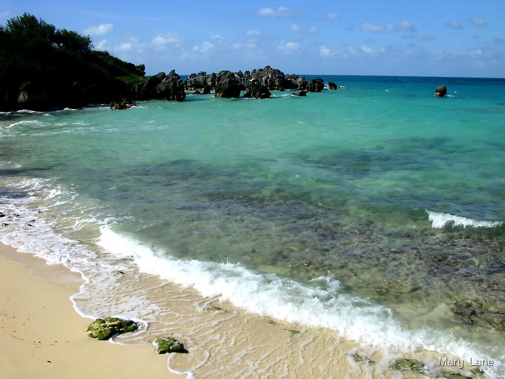 St. George Beach by Mary  Lane