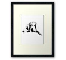 Golden Retriever Puppy Dog Engraving Framed Print