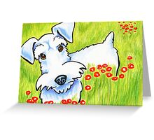 Pure Schnauzer Greeting Card