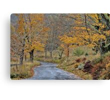 Moving On Down The Road Canvas Print
