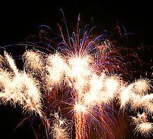 Fireworks 1 by Janine  Hewlett
