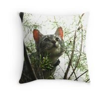 Top of the World Throw Pillow