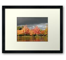 rain fall Framed Print