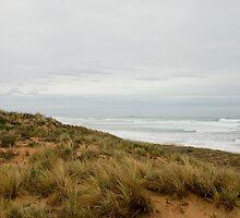 Dunes by samg