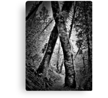 tree hugging Canvas Print