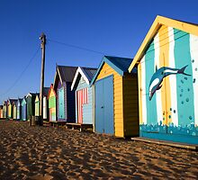 Beach Boxes by Andrew  Maccoll