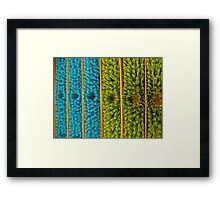 meet the broomheads Framed Print