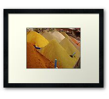Spices, Spices, & Spices Framed Print