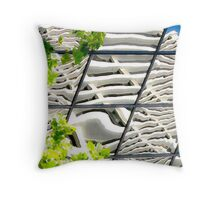 abstracts in glass Throw Pillow