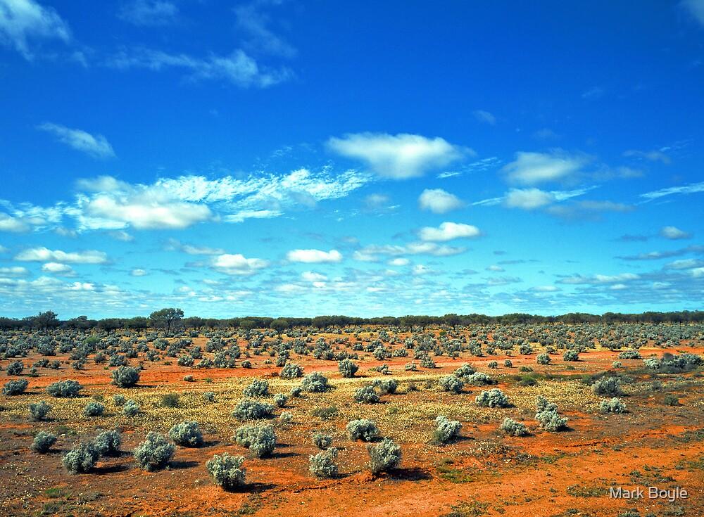 Saltbush Landscape by Mark Boyle