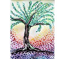 Watercolour Olive Tree Photographic Print
