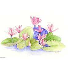 Water Flowers by Mariana Musa