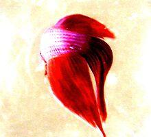 Fish in a bowl by Priscilla Crockett