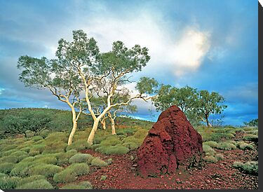Karijini Landscape #1 by Mark Boyle