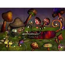 Mushroom - Deep in the Bayou Photographic Print