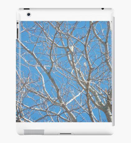 Bare Naked iPad Case/Skin