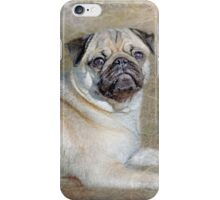 Pug Pose iPhone Case/Skin