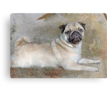 Pug Pose Canvas Print