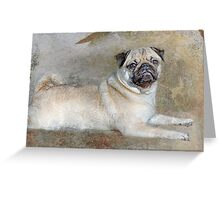 Pug Pose Greeting Card