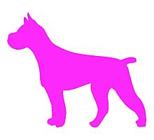 Pink Pit Bull Silhouette Photographic Print