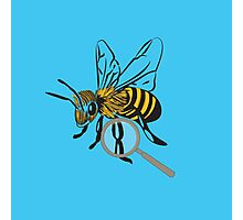 The Bee's Knee's Photographic Print