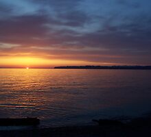 Birch Bay by Caitlin