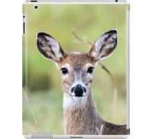 Portrait of a Whitetail Deer iPad Case/Skin