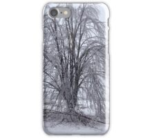 Michigan Ice Storm iPhone Case/Skin