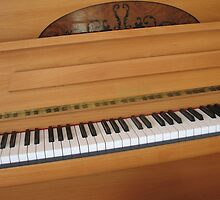 Tickling the Ivories - Piano Keyboard by BlueMoonRose