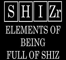 Shizr Periodic Table by raineOn