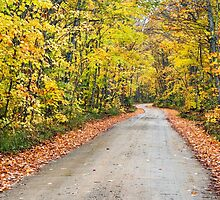 Autumn Country Road by Kenneth Keifer