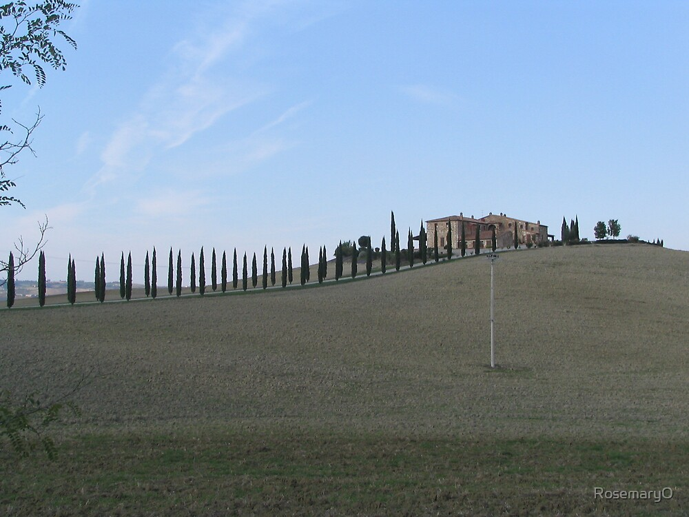 Tuscan Landscape by RosemaryO