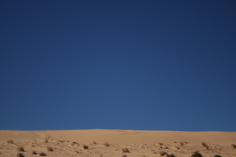 Simpson Desert by Bronwyn  Murphy
