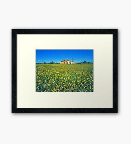 Old Ruins and Everlastings, Yalgoo, WA Framed Print